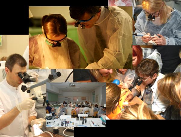 kursy stomatologiczne i szkolenia stomatologiczne